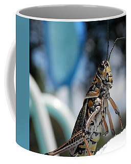 Coffee Mug featuring the photograph Grasshopper The Water's Fine by Belinda Lee