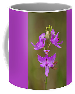 Grasspink #1 Coffee Mug