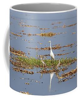 Grat Egret - India Coffee Mug