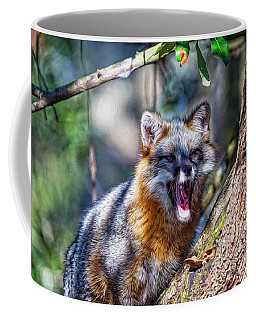 Gray Fox Awakens In The Tree Coffee Mug
