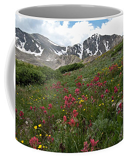 Coffee Mug featuring the photograph Gray's And Torreys by Cascade Colors