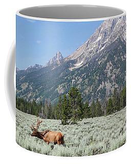 Grazing Elk In Grand Teton National Park Coffee Mug
