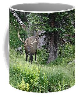 Grazing Elk Coffee Mug