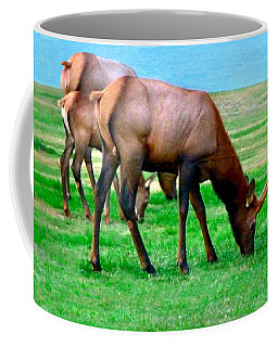 Grazing Elk Coffee Mug