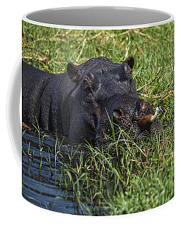 The Hippo And The Jacana Bird Coffee Mug