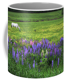 Coffee Mug featuring the photograph Grazing In A Lupine Dream by Wayne King