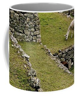 Grazing In Machu Picchu Coffee Mug