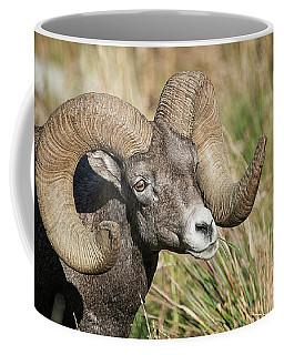 Grazing In The Grass Coffee Mug