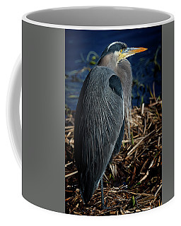 Coffee Mug featuring the photograph Great Blue Heron 2 by Randy Hall