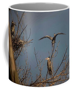 Great Blue Heron - 3 Coffee Mug