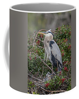 Great Blue Heron And Nestling Coffee Mug