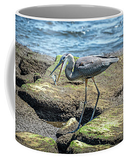Great Blue Heron Catching A Blue Crab On Chesapeake Bay Coffee Mug