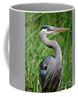 Great Blue Heron Close-up Coffee Mug