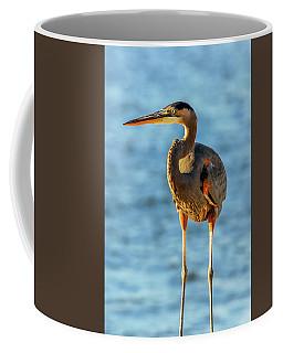 Great Blue Heron Closeup Coffee Mug