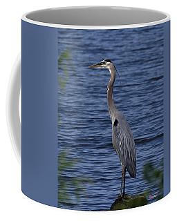 Great Blue Heron Dmsb0001 Coffee Mug