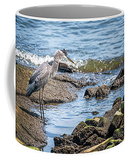 Great Blue Heron Fishing On The Chesapeake Bay Coffee Mug