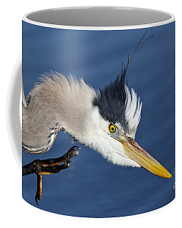Great Blue Heron - Good Scratch Coffee Mug