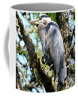 Great Blue Heron In A Tree Coffee Mug