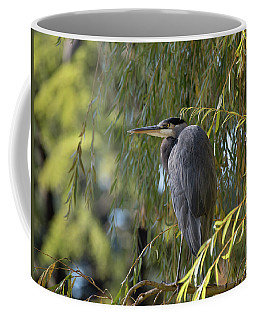Great Blue Heron In A Willow Tree Coffee Mug by Keith Boone