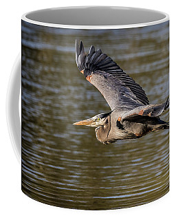Great Blue Heron In Stratford Coffee Mug