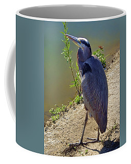 Coffee Mug featuring the photograph Great Blue Heron by Mariola Bitner