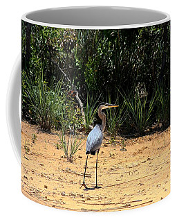 Great Blue Heron On Beach Coffee Mug by Sheila Brown