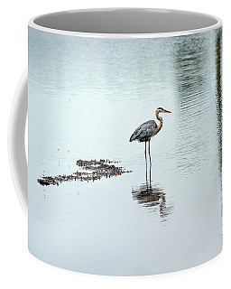 Great Blue Heron On Chesapeake Bay Pond Coffee Mug
