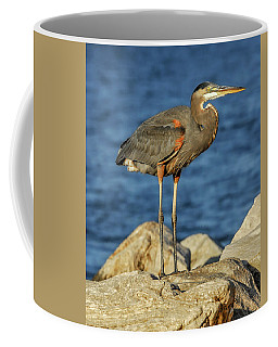Great Blue Heron On Rock Coffee Mug