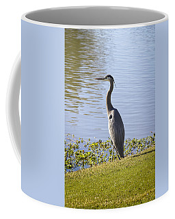 Coffee Mug featuring the photograph Great Blue Heron by Phyllis Denton