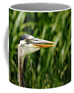 Coffee Mug featuring the photograph Great Blue Heron Portrait by Debbie Oppermann