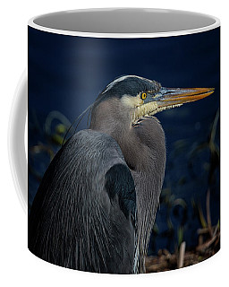 Coffee Mug featuring the photograph Great Blue Heron by Randy Hall
