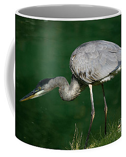 Great Blue Heron Series Coffee Mug