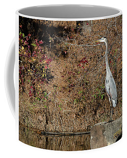 Coffee Mug featuring the photograph Great Blue Heron Standing Tall by George Randy Bass
