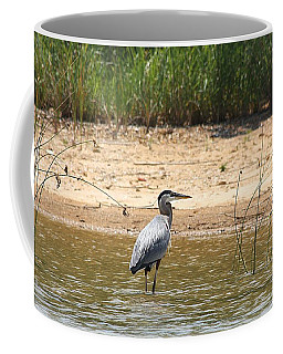 Great Blue Heron Wading Coffee Mug by Sheila Brown