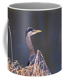 Coffee Mug featuring the photograph Great Blue Heron Waiting by Sharon Talson