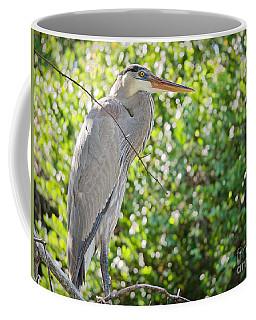 Great Blue Posing Coffee Mug