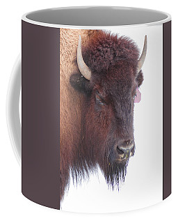 Great Buffalo Coffee Mug by Sean Allen