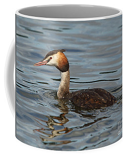 Coffee Mug featuring the photograph Great Crested Grebe by Maria Gaellman