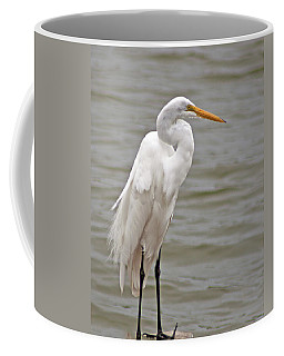 Coffee Mug featuring the photograph Great Egret by Bill Barber