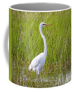 Coffee Mug featuring the photograph Great Egret In The Spring  by Ricky L Jones