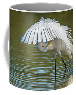 Great Egret Preening 8821-102317-2 Coffee Mug