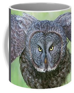 Great Gray Owl Flight Portrait Coffee Mug