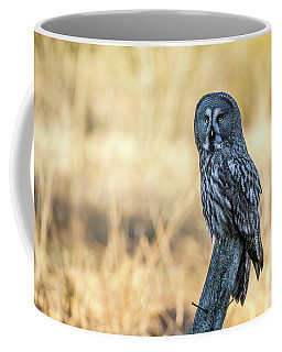 Great Grey Perching Coffee Mug by Torbjorn Swenelius