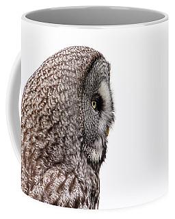 Great Grey's Profile On White Coffee Mug