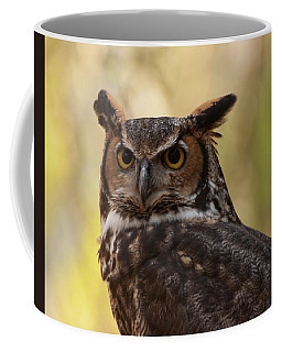 Coffee Mug featuring the photograph Great Horned Owl In A Tree 1 by Chris Flees