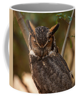 Coffee Mug featuring the photograph Great Horned Owl In A Tree 2 by Chris Flees