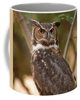Coffee Mug featuring the photograph Great Horned Owl In A Tree 3 by Chris Flees