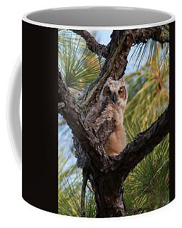 Great Horned Owlet Coffee Mug