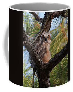 Great Horned Owlet Coffee Mug