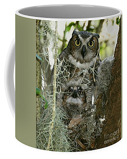 Great Horned Owlet Peeking Out Coffee Mug by Myrna Bradshaw